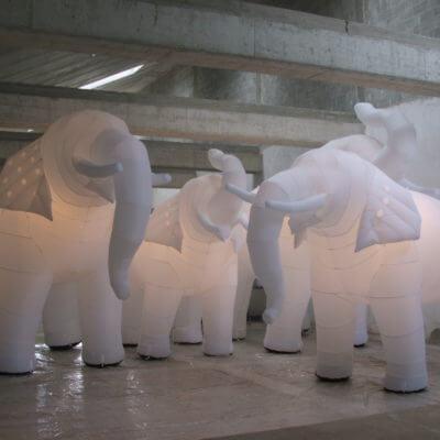 Kaltluftdisplay-Elefanten
